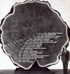 tree_timeline